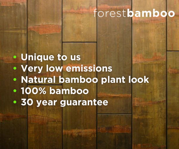 Bamboe Vloeren Outlet : Moso bamboe forest ecosia