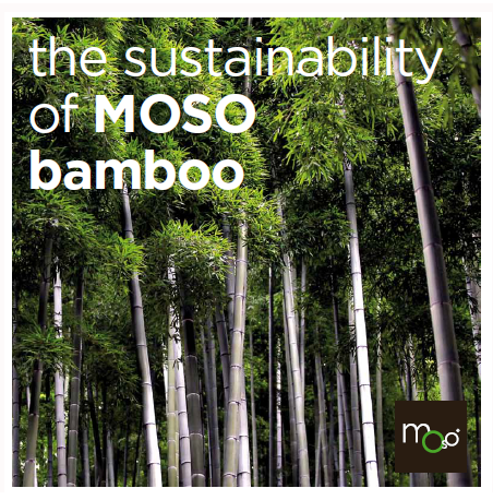 Moso Bamboo Surfaces – Bamboo Fooring Beams, Panels, Veneer